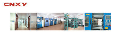 Yueqing Xingyang Electronic Co.,ltd